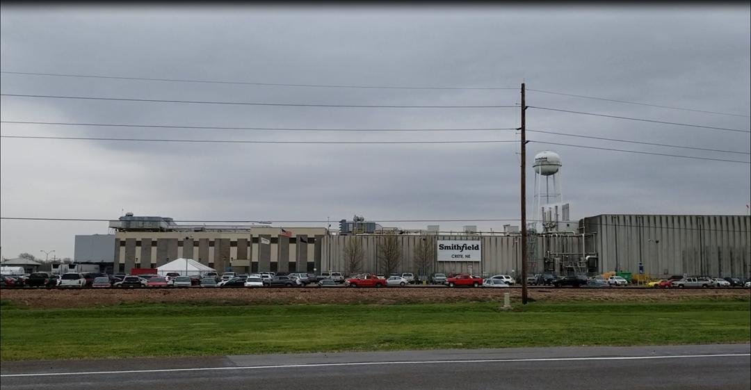 PETA calls for criminal investigation of Smithfield plant in Crete