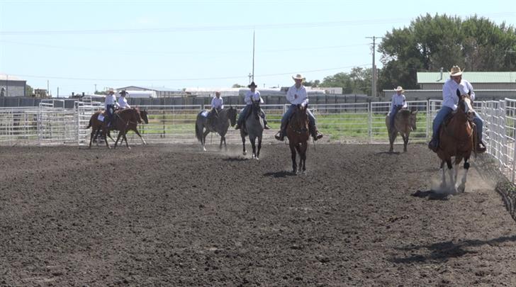 Open Class fair exhibits return to Cheyenne County Fair