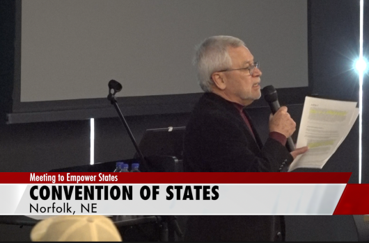Norfolk residents, state senators show support for Convention of States