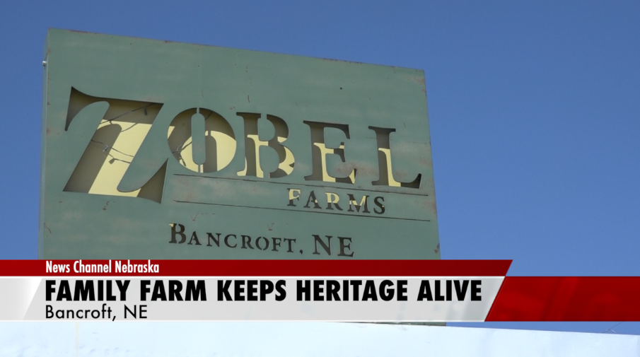 140-year-old family farm keeps heritage alive during pandemic