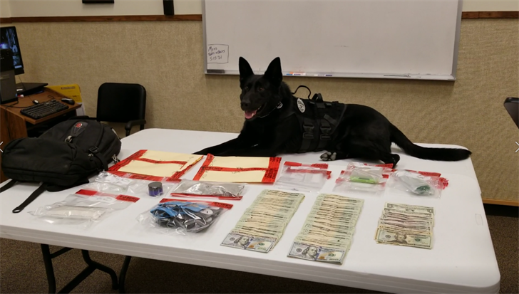 "Beatrice Police K9 ""Thomas"" and handler, recover large quantity of meth"