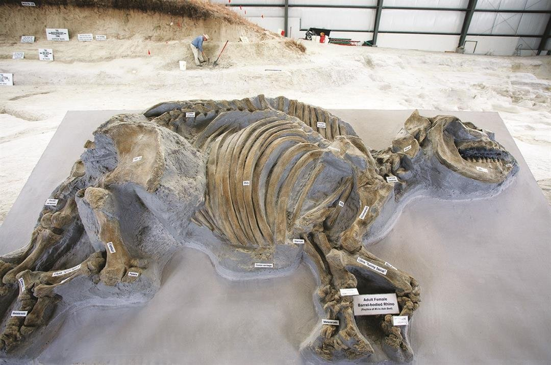 Ashfall Fossil Beds to open for 30th season in May