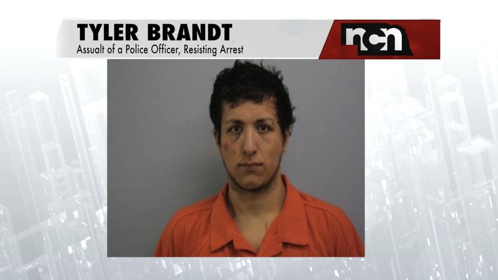 Norfolk man arrested after allegedly punching officer