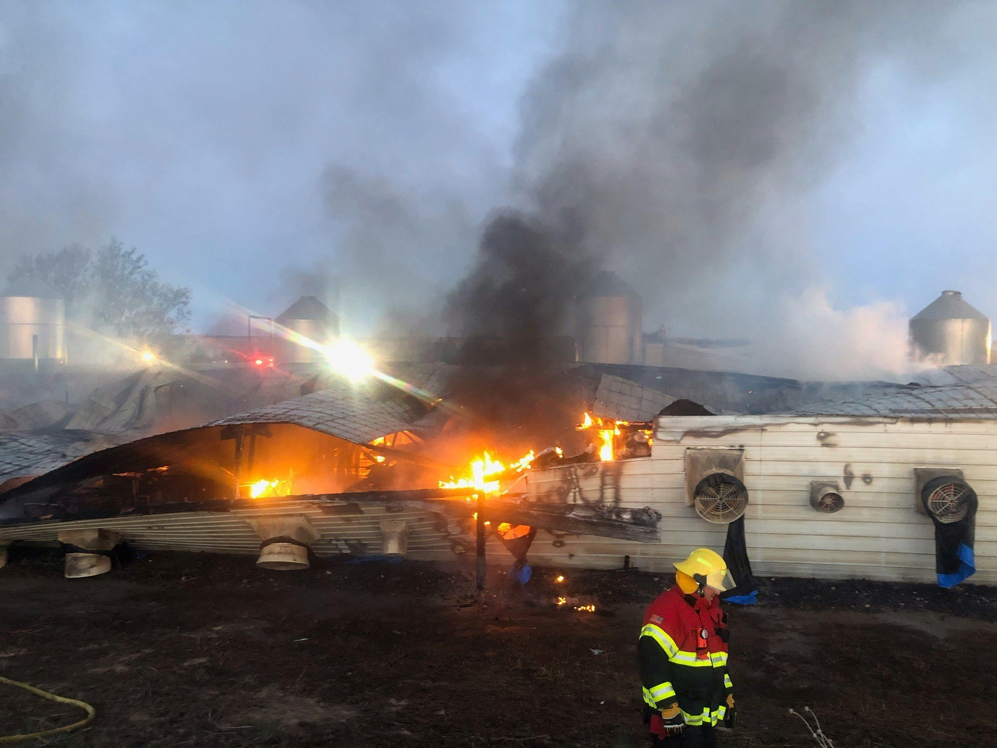 Approximately 10,000 hogs killed in fire at Pillen Family Farms