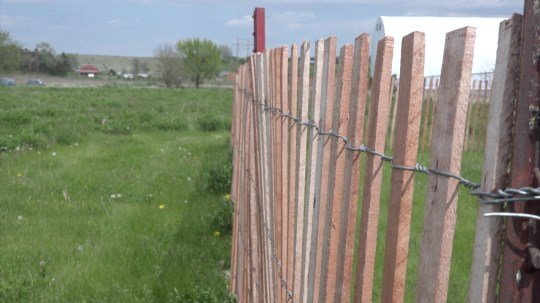 Neligh creates garden to combat food insecurity