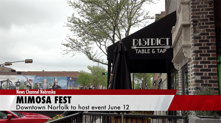 Mimosa Fest coming to downtown Norfolk