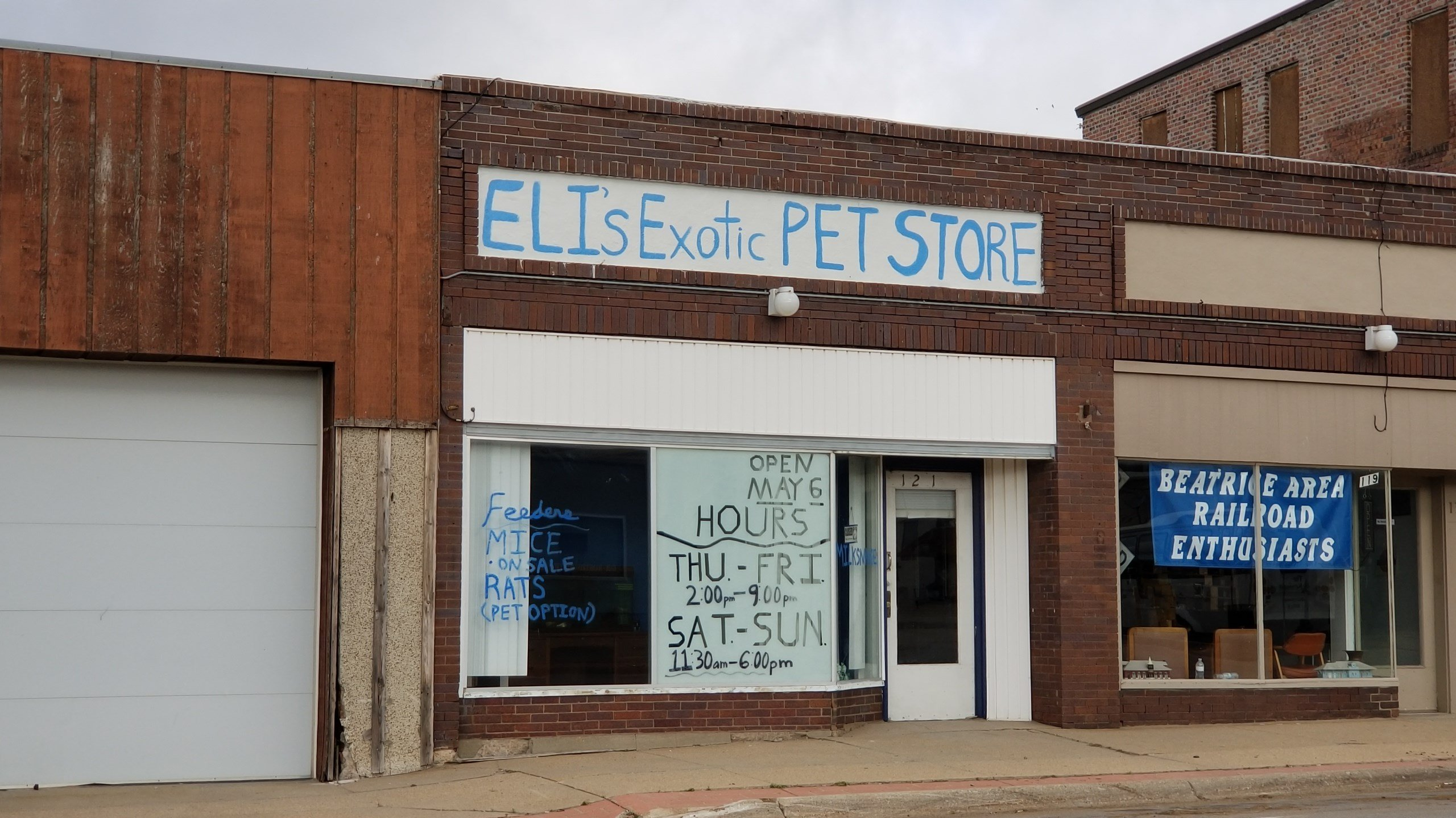 Exotic pet store owner desiring to meet city code on animals