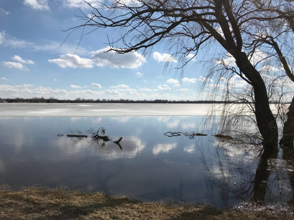 Toxic algae found in northeast Nebraska lake