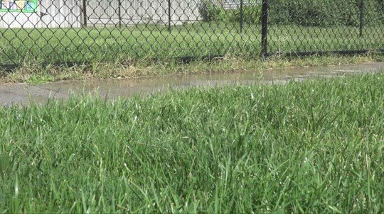 Amid hot, dry conditions, Norfolk asking residents to conserve water