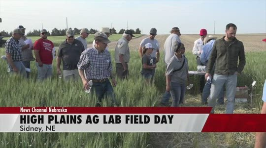Small changes, big impacts: High Plains Ag Lab shows off research at field day