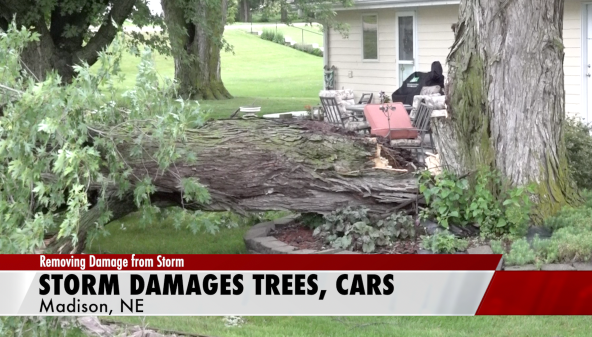 Severe weather kills power, smashes cars