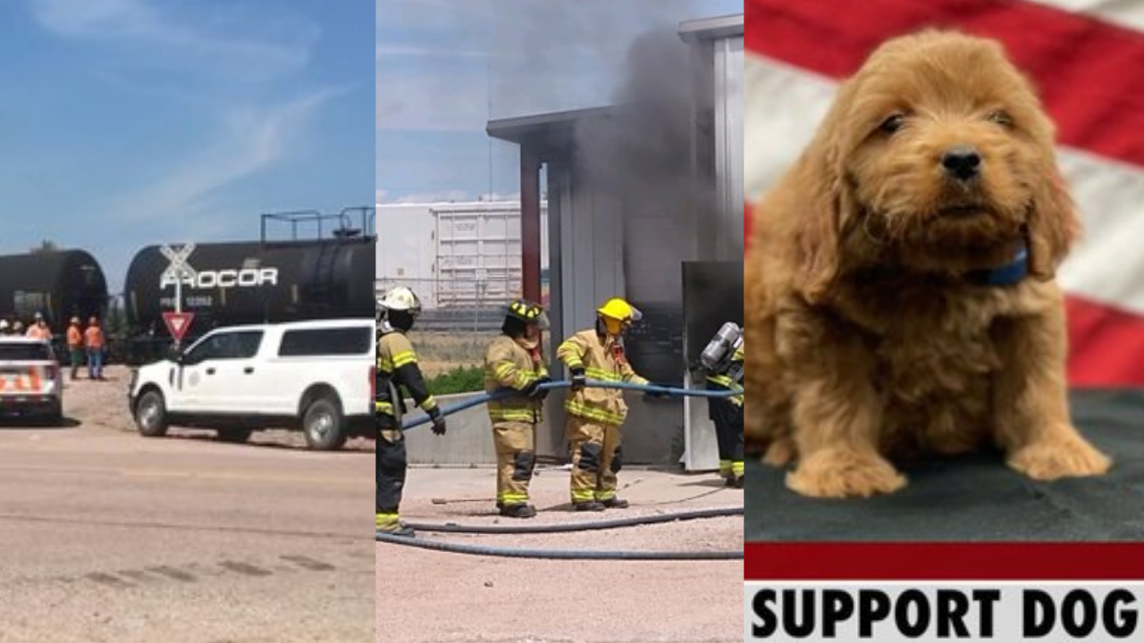 Fatal crashes, therapy dogs, and more: All of the biggest stories from across Nebraska