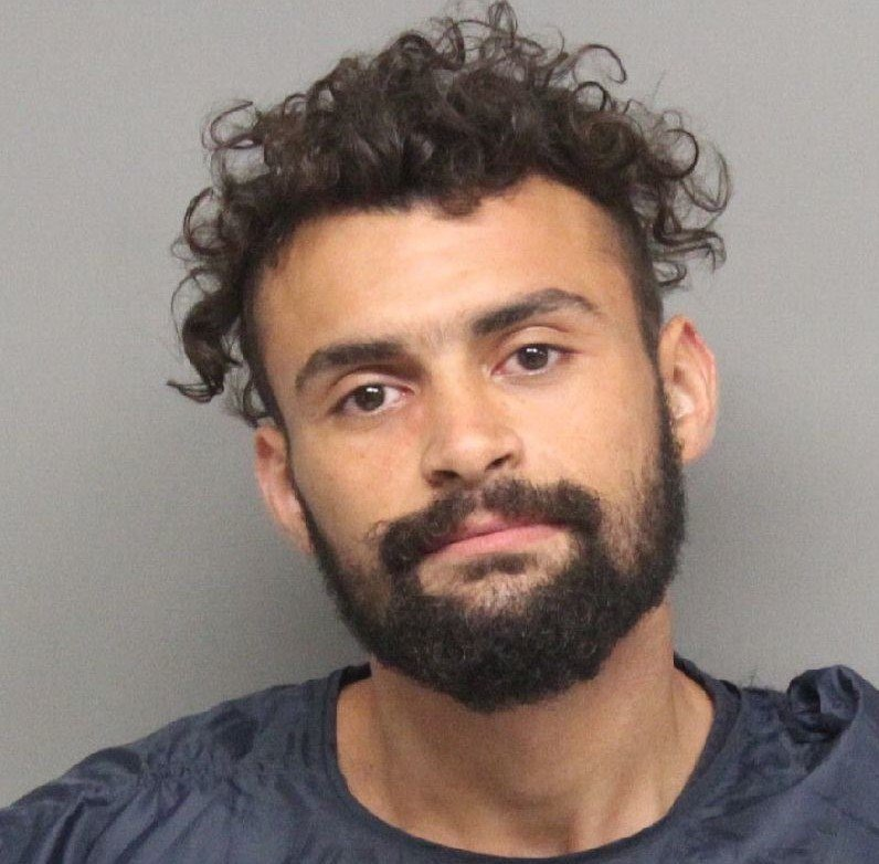 Man accused of hitting car, stealing chicken