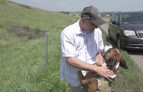 'He saved two lives that day': Driver hits then rescues dog on Highway 81