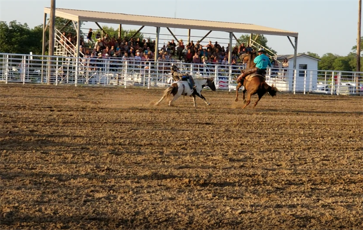 Rodeo and rides on opening day of the Gage County Fair and Expo