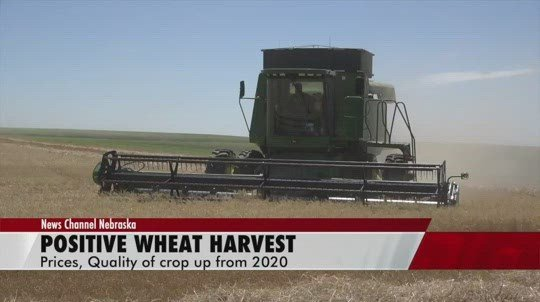 Wheat quality, prices up in 2021 as Nebraska harvest wraps up