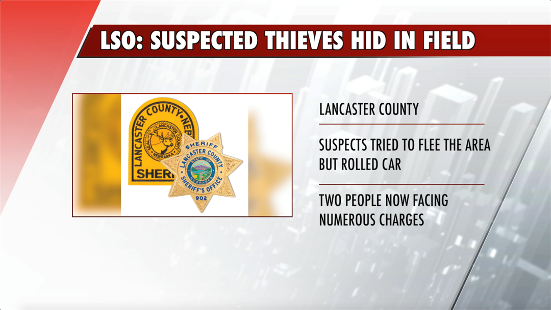 LSO: two suspected thieves tried to hide in a field