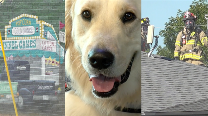 Wonder Dogs, house fires, and more: all of the biggest stories from across Nebraska