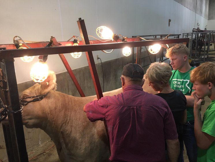 Schedule of Events - 2019 Otoe County Fair - NEWS CHANNEL